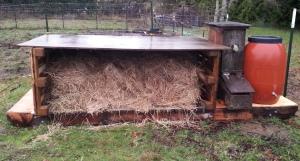 2014-12-24 New Pig Shelter